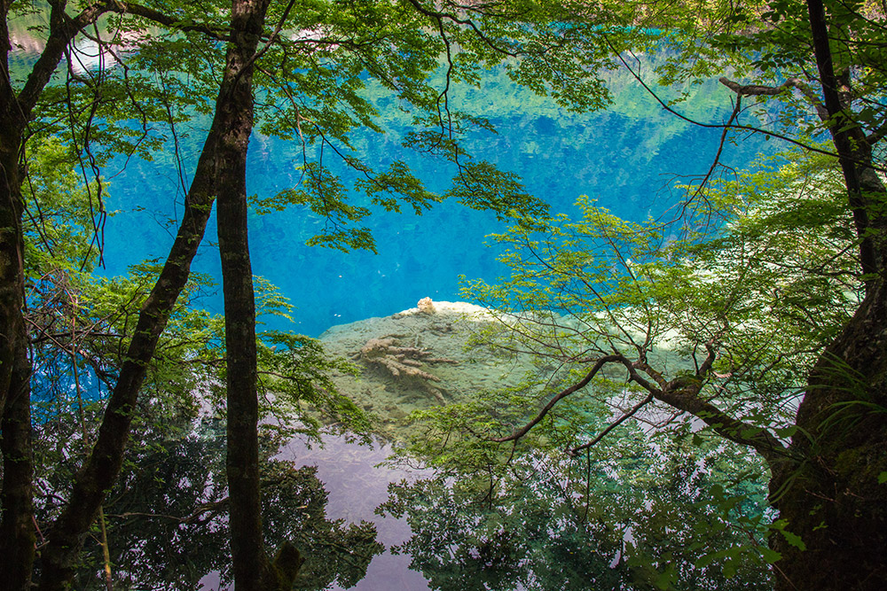 A lake in Jiuzhaigou